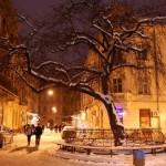 Пасаж Крива липа. Екскурсії Львів ціна