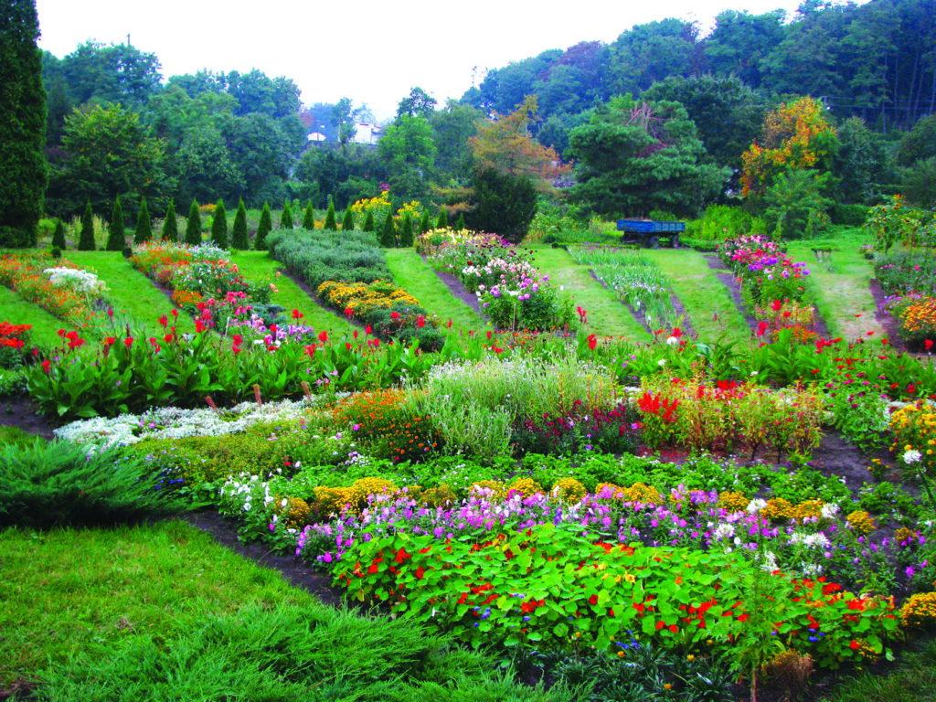 екскурсія в ботанічний сад